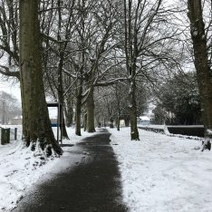 Guernsey snow 2018 - the park